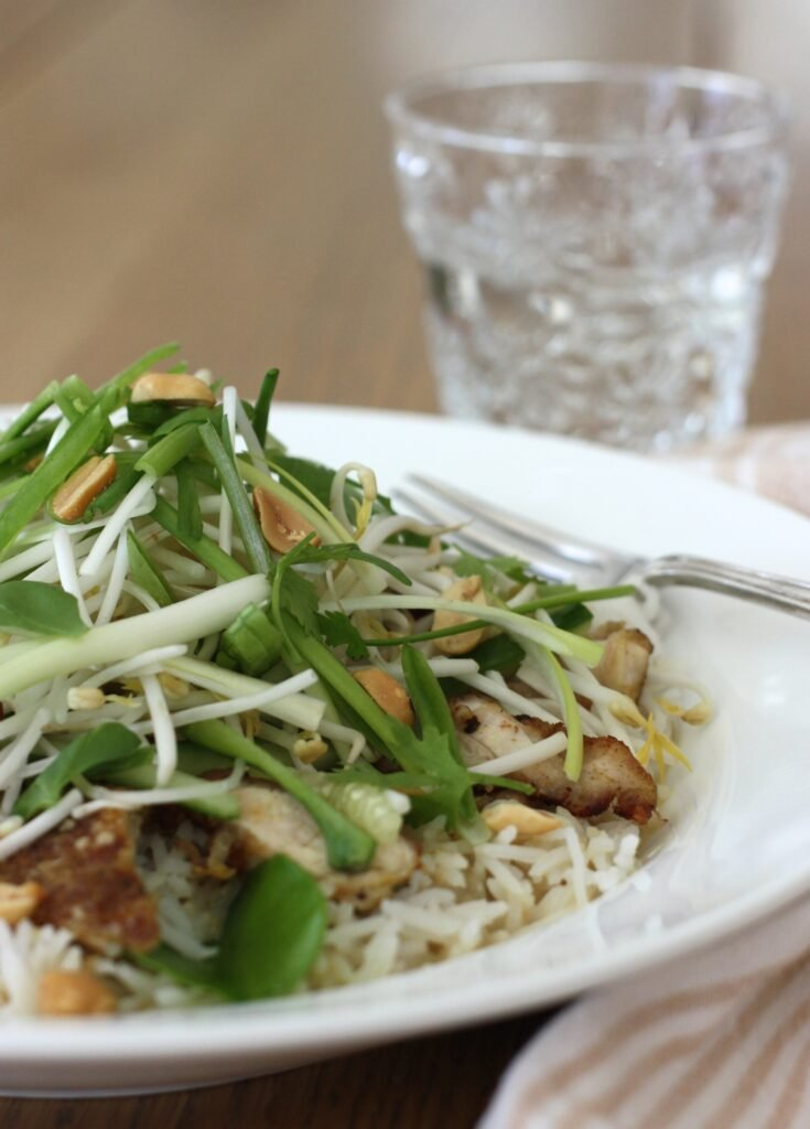 Thai Chicken Satay Rice Bowl - vertical