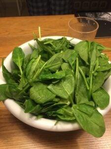 TTDWk2-simple-salad
