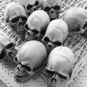 halloween-skulls